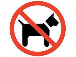 Comunicación  sobre el acceso de mascotas