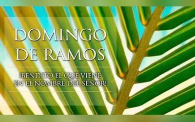 Feliz Domingo de Ramos